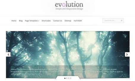 Evolution - универсальная тема для WordPress