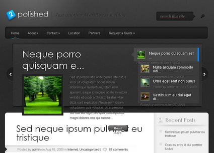 Polished v1.8 тема WordPress от ElegantThemes